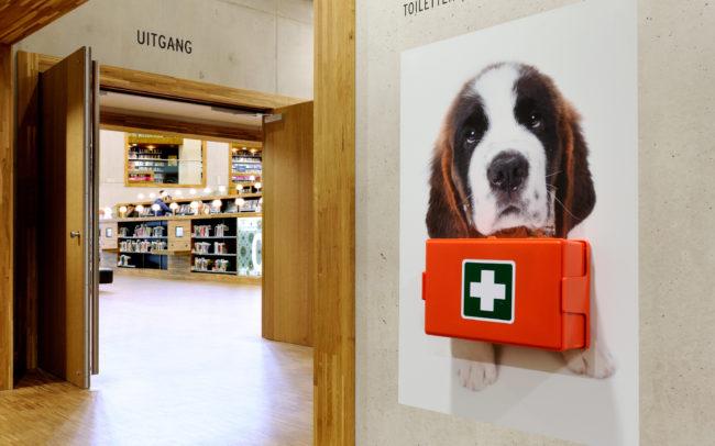 BHV-middelen Visual Puppy Sint Bernard